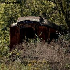A train photograph of a forgotten passenger car sits among the trees slowly fading into the background of overgrown foliage.  Old trains can make for amazing landscape prints as the abandoned trains become lost is a sea of trees and shrubs.  A must have print for any train collector and train lover.  See this and more prints like it by visiting the DSGgallery at our Etsy shop at this link:  https://www.etsy.com/shop/DSGgallery