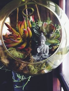 tumblr bedroom plants - Google Search                                                                                                                                                     More