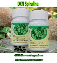 DXN Spirulina: Nutritional Fertility and Pregnancy Support Types Of Blue, Net Flix, Alkaline Foods, Beta Carotene, Organic Recipes, Fertility, Superfood, Herbalism, Lose Weight