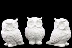 Porcelain Owl Assortment of Three Matte White