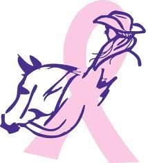 Breast Cancer ribbon horse