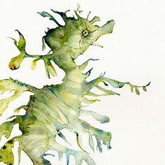 Leafy Sea Dragon Print of my original watercolor painting (the original has been sold). Dragon Seahorse, Seahorse Art, Seahorses, Watercolor Sea, Watercolor Artwork, Weird Looking Animals, Leafy Sea Dragon, Dragon Print, Arte Floral