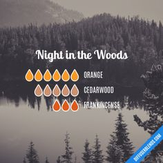 Night in the Woods Essential Oil Blend for Diffuser Essential Oil Diffuser Blends, Doterra Essential Oils, Young Living Essential Oils, Design Facebook, Elixir Floral, Essential Oil Combinations, Perfume, Living Oils, Diffuser Recipes