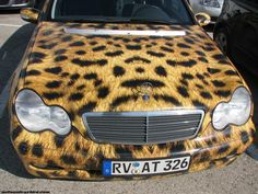 Tiger Painted Car - Car Images_The New Picture of Cars_