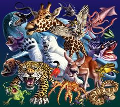 Weird  Wild Creatures montage by Jerry LoFaro | Creatures | 2D | CGSociety