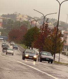 Outono Caxias do Sul R/S