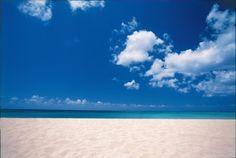 Caribbean Beach -- please insert me here.