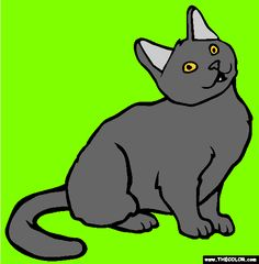 chartreux cat online coloring page