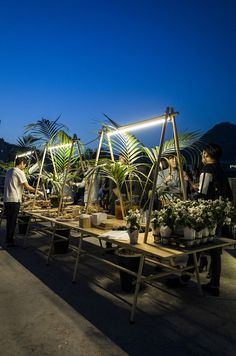 Post Standards Rooftop Party Design Palm Tree Table Visit for more inspiring images and decor inspirations Rooftop Decor, Rooftop Terrace Design, Rooftop Party, Rooftop Lounge, Bar Lounge, Terrace Cafe, Rooftop Gardens, Rooftop Lighting, Outdoor Lounge