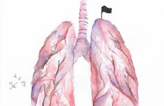 lungs painting - Google Search
