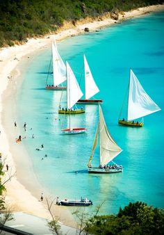 travelingcolors:  Queen's Birthday Boat Race | Anguilla (by...