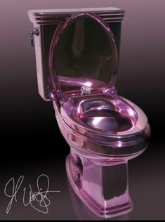 OMG!  Ya gotta admit---it IS pretty....for toilets!