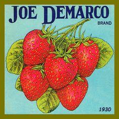 Olde America Antiques | Quilt Blocks | National Parks | Bozeman Montana : Vintage Canning Labels Hot Pads - Joe Demarco Strawberries