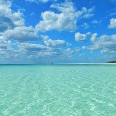Bahamas,  facebook.com/staysalty