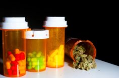 One unexpected benefit of medical marijuana legislation appears to be a decrease in painkiller overdoses, perhaps because some chronic pain patients are turning to cannabis instead of powerful opioid drugs. Medical Marijuana, Cannabis News, Buy Cannabis Online, Cannabis Plant, Drugs, Health And Wellness, Herbalism, High Times, Studying