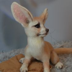 Corgi, Rabbit, Animals, Bunny, Corgis, Rabbits, Animales, Animaux, Bunnies