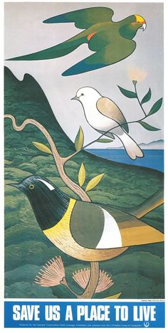 """Save us a place to live"", Don Binney, Produced for the New Zealand National Conservation Week Campaign Committee, with assistance from the L. Nathan Group of Companies. Art Maori, Life Poster, New Zealand Art, Nz Art, Nature Posters, Bird Art, Art Images, Conservation, Vintage Posters"