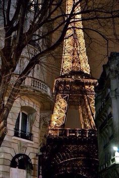 The beautiful Eifel Tower!