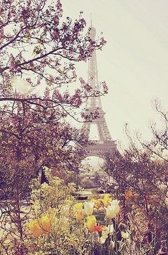 Eiffel Tower, Paris France