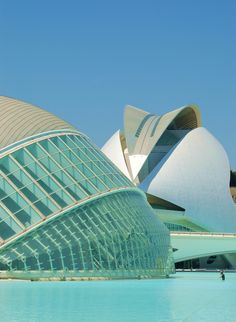 City of Arts and Sciences, Valencia, Spain. Designed by Santiago Calatrava and Félix Candela, it was inaugurated in 1998.