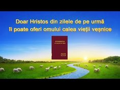 """The Spirit of Truth Is Come """"Only Christ of the Last Days Can Give Man the Way of Eternal Life"""" Praise And Worship Songs, Praise God, Spirit Of Truth, Biblia Online, Inspirational Prayers, Christian Songs, Life Words, Knowing God, No Way"""