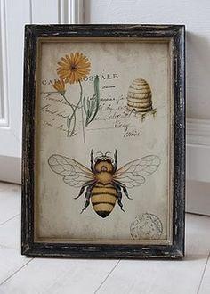 beautiful botanical print