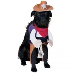 There's a new sheriff in town.  #YouDontShopYouHUNT #pets #fun