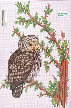 pretty owl, not too cartoonish