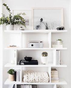 black + white horse