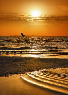 *Sanibel Sunrise with Fort Myers beach in the background