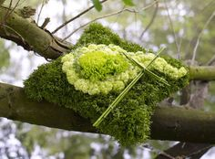 Trauerfloristik: Trauerkissen im Natur-Look Funeral Arrangements, Nature Decor, Centre Pieces, Thanksgiving Crafts, Ikebana, Garland, Floral Design, Planters, Bouquet