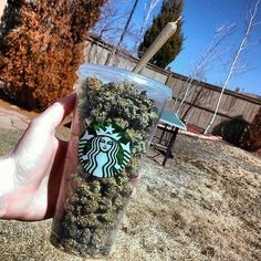 WeedBucks is a great way to start off your morning