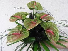 smuteční kytice 6 květů