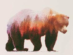 La sérieAnimal Kingdom de la photographe et graphic-designerAndreas Lie, qui mélange animaux et paysages dans de magnifiques compositions endouble expos