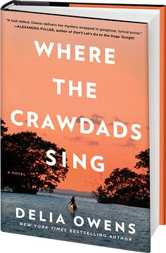 where the crawdads sing read online and free download - Marsh is not swamp. Marsh is a space of light, where grass grows in water, and water flows into the sky. Slowmoving creeks wander, carrying the orb of the sun with them to the sea, and long-legged birds lift with unexpected grace—as though not built to fly—against the roar of a thousand snow geese. Then within the marsh.................................... Modern Reception Desk, Reception Desk Design, Good Books, Books To Read, Amazing Books, Bullet Journal Bookshelf, Free Facebook Likes, Tv Set Design, Shopping