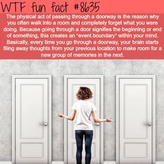 Event boundaries, why we forget stuff when entering a room - WTF fun facts