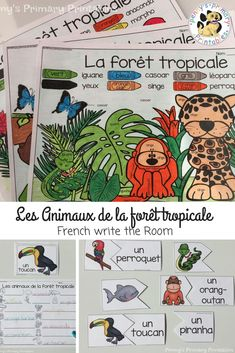 All about rainforest animals! Practice reading and writing French rainforest animal words in this great active literacy activity to get students moving and excited about learning! This set can also be used in literacy centres, small groups or independent Vocabulary Activities, Literacy Activities, Teacher Pay Teachers, Teacher Resources, Literacy Centres, Rainforest Animals, French Resources, Word Puzzles, Word Pictures