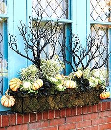 Fall window box idea garden-ideas