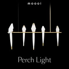 Moooi presents creative luxury for a well curated life. Innovative, provocative & poetic at the same time. Flirting, Sydney, Lamps, Innovation, Cool Designs, Restaurant, Lights, Lightbulbs, Diner Restaurant