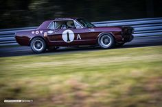 This Mustang notchback coupe was originally a 1964 1/2 6-cylinder that was updated to '66 race specs and has seen a lot of track time, beginning with an enduro at Sebring and campaigned extensively by many drivers and teams into the 1970s.  It was the first car entered in the new T/A series in 1966, so it got to wear #1.  I love the way the Mustang notchbacks look when they're set up for racing.