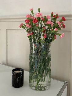 Bloom Baby, Diy Projects For Beginners, Flower Aesthetic, Real Plants, Pretty Flowers, Wild Flowers, My Room, Interior And Exterior, Interior Plants