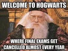 Lol yes! Only at Hogwarts, you get to advance to the next year freely and don't get tested on anything! Only at Hogwarts. Harry Potter Puns, Harry Potter World, Harry Potter Funny Quotes, Welcome To Hogwarts, Memes In Real Life, Yer A Wizard Harry, Fantastic Beasts, Fangirl, At Least