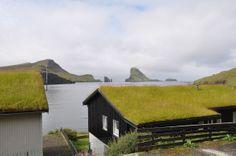 Op de Faeröer zijn grasdaken zeer populair: http://www.nordview.nl/locaties_faeroer.html