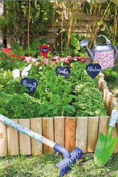 jardín de plantas aromáticas