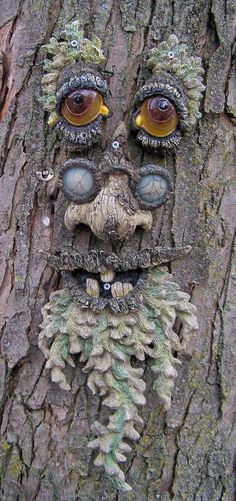 To create the illusion that Mother Nature has gone berserk and created foliage with a spooky personality, here are some tips. Photos of lots of tree faces and talking trees here! Tree People, Tree Faces, Tree Carving, Wood Carving, Unique Trees, Old Trees, Tree Trunks, Nature Tree, Nature Nature