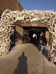 Jackson Hole Airport (JAC) - been there, designed a LEED school in Jackson Hole. Jackson Hole Airport, Travel List, Amazing Architecture, Places Ive Been, Bucket, Journey, School, Design, Pack List