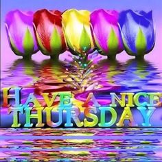Have A Nice Thursday Pictures, Photos, and Images for Facebook, Tumblr, Pinterest, and Twitter