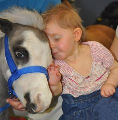 GENTLE CAROUSEL MINIATURE THERAPY HORSES BRING THEIR LOVE WHERE IT IS NEEDED MOST. Our teams of tiny therapy horses visit over 25,000 adults and children each year inside hospitals, hospice programs, assisted living programs and with families who have experienced traumatic events.   From the children and first responders of Sandy Hook Elementary School / Newtown, CT to the tornado survivors of Moore, OK our little therapy horses bring their special love where it is needed most.