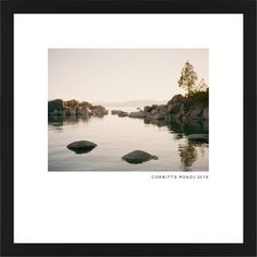 Modern Gallery Framed Print, Black, Contemporary, White, White, Single piece, 16 x 16 inches, White