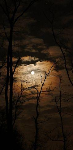 Night landscape photography beautiful sunset New Ideas Night Photography, Landscape Photography, Nature Photography, Photography Lighting, Mobile Photography, Photography Tips, Ciel Nocturne, Shoot The Moon, Beautiful Moon